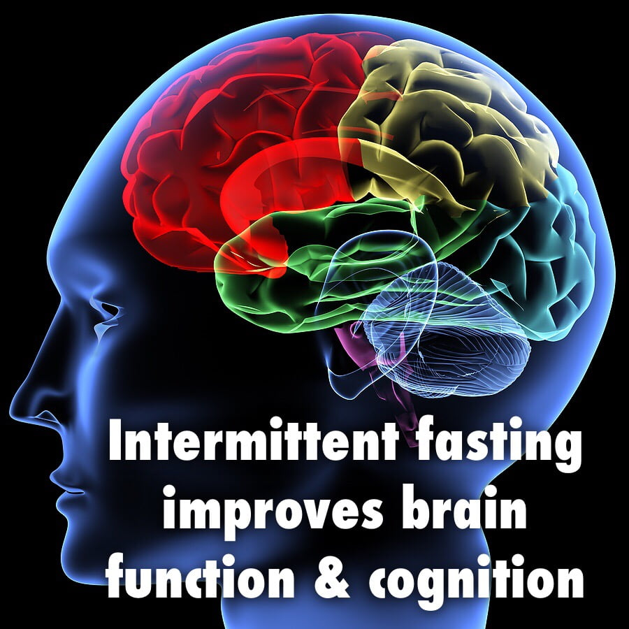 intermittent fasting and brain health