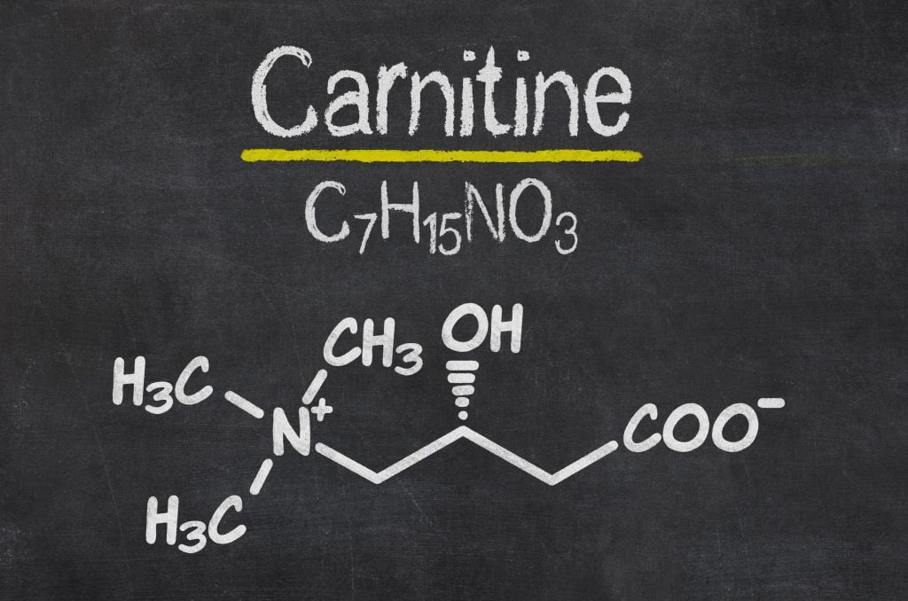 what is  L cxarnitine