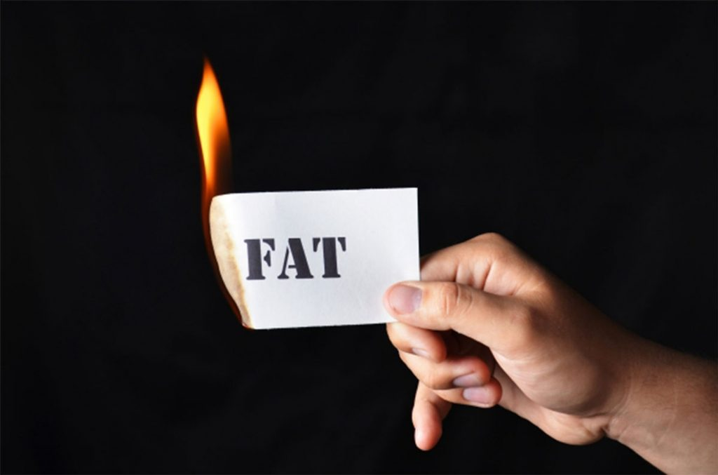 L-Carnitine- Does it help in burning fats?