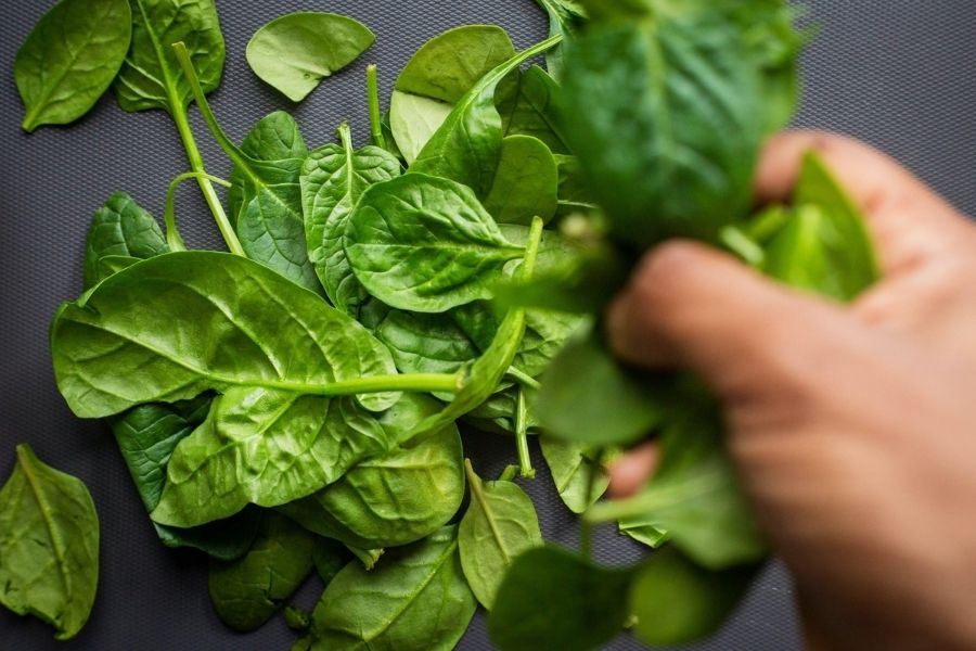 Macronutrients Content In Cooked And Raw Spinach