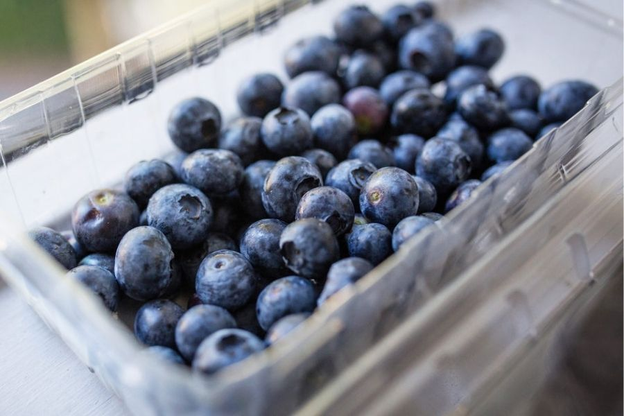Blueberries And Cancer