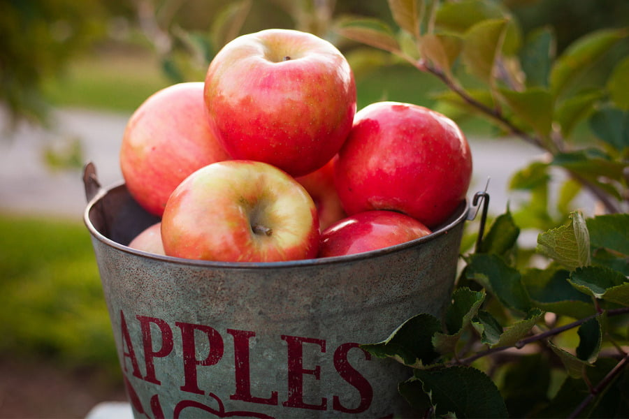Apples Are Immunity Booster