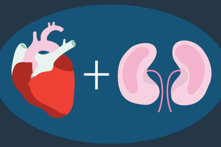 Cardiovascular And Kidney Disorders